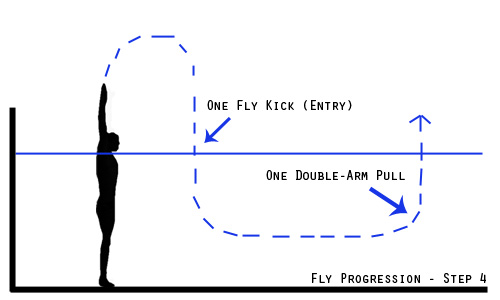 fly progression - step 4