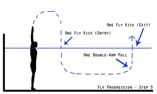 fly progression - step 5
